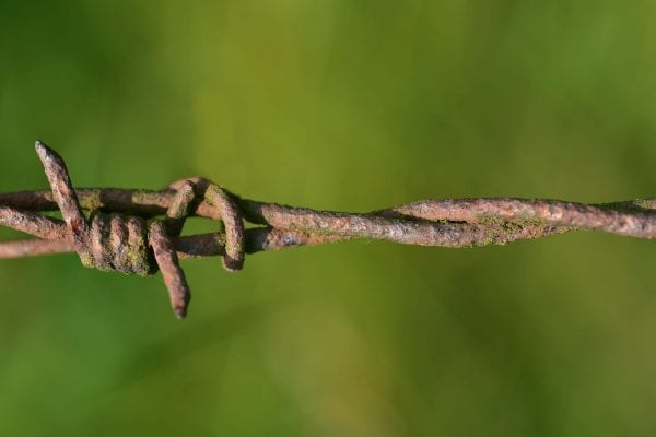 barbed-wire-fence-ww2
